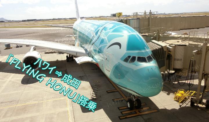 【3世代ハワイ家族旅行2020】ANAフライングホヌ プレエコ搭乗記⑤(ハワイ⇒成田)